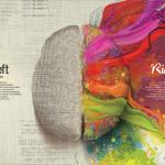 Com è fatto il cervello di un bambino