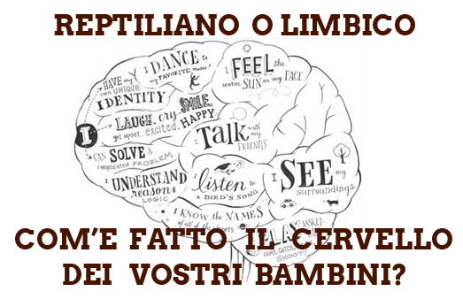 il cervello dei bambini