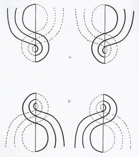 disegni di forma