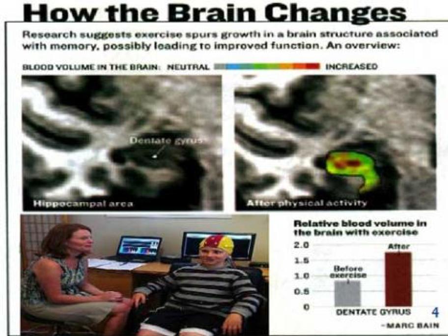 il movimento influenza il modo in cui il cervello apprende.